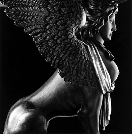 Robert Mapplethorpe, Sphinx, 1988, silver gelatin print, 24 x 20 inches. Copyright Robert Mapplethorpe Foundation. Used by permission.