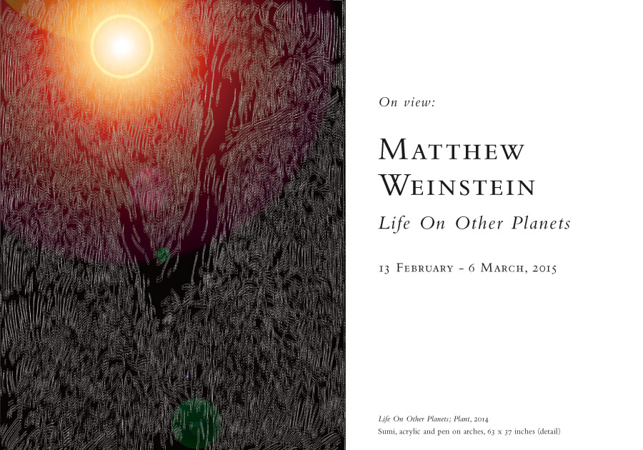 Matthew Weinstein: Life On Other Planets, 13 February - 6 March, 2015, at Baldwin Gallery, Aspen