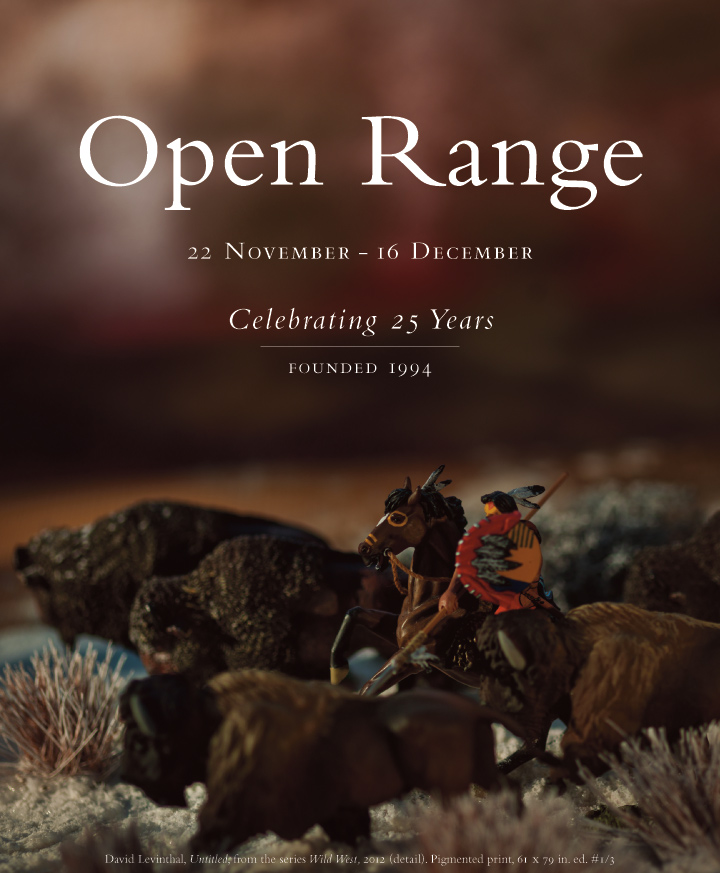 Open Range: a group showing of gallery artists at the Baldwin Gallery, 22 November - 16 December, 2019